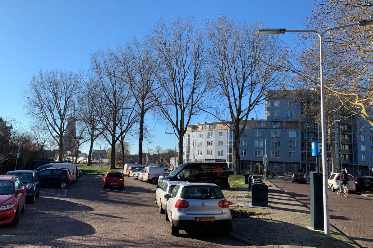 Bomen Valkbrug_Fotor